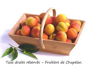 Recette de confiture à l'abricot et aux amandes