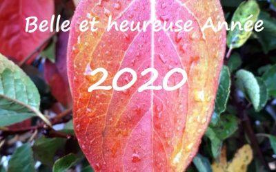 # Belle Année 2020 !